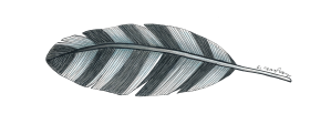 Feather Blue copy
