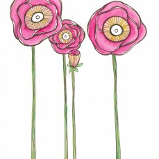 flowers watercolor pink sepia_20160407_0001