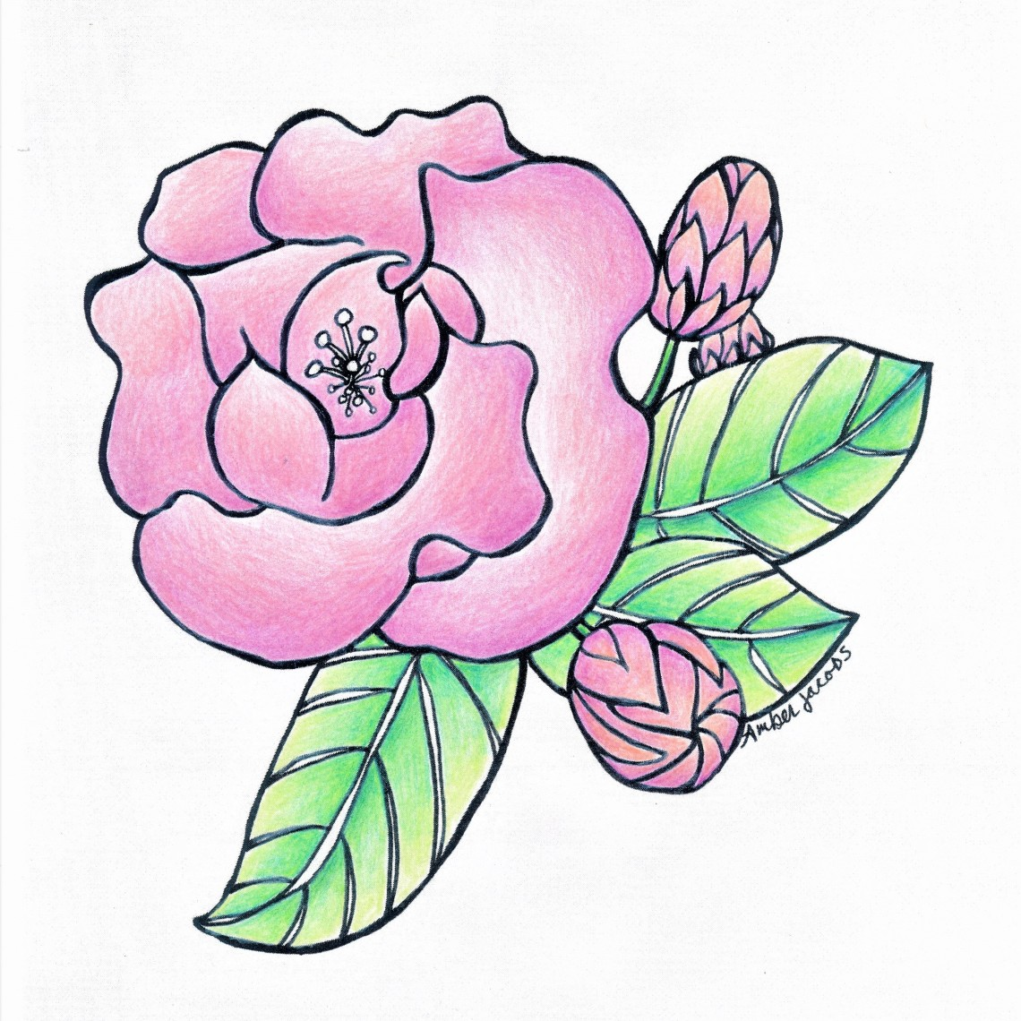 pink flower aroma factor_20170502_0001 (2)