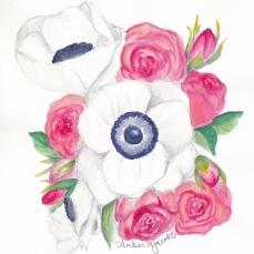 watercolor anemone roses